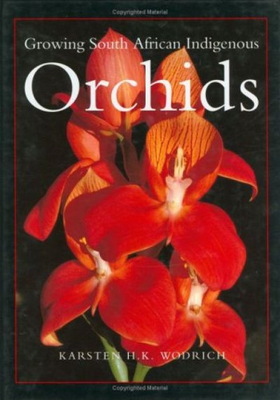 Growing South African Indigenous Orchids