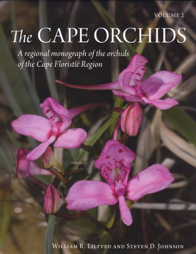 The cape orchid a regional monograph